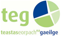 TEG Irish Classes